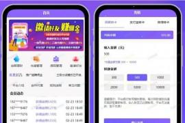 京东淘宝智能自动抢单系统源码V8版本运营版