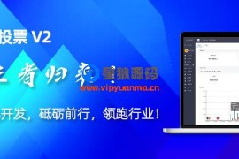 钻石投票2020年新版v2版本6.1.2最新运营版