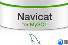 navicat for mysql中文版破解免费下载实测可用