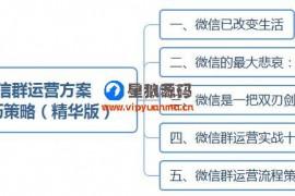 微信群运营图表运营方案及技巧策略(精华版)